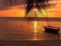 Zanzibar offerte Estate