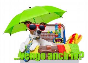 Vacanze in estate con il cane?