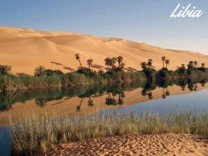 Un'oasi nel deserto in Libia