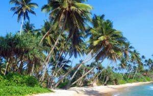 Sri Lanka: una vacanza tra spiagge e cultura