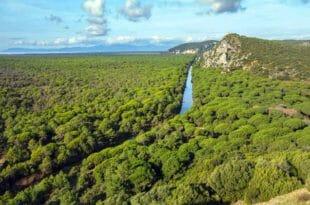 Parco dell'Uccellina: informazioni ed itinerari