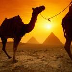 Perchè non abbinare un soggiorno mare sul Mar Rosso alla crociera sul Nilo?